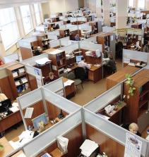 Agentes Públicos e Servidores Estatais