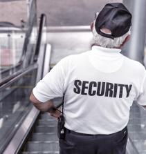 Gestão em segurança pública