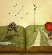 Prática de ensino de leitura no contexto do campo