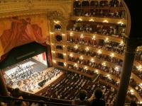 Teatro: Expressão, Performance e Linguagem
