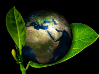 O meio ambiente e os recursos naturais