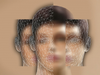 Psicologia do desenvolvimento humano