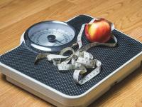 Alimentação especial e estratégias de controle da obesidade