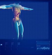 Noções básicas de anatomia e fisiologia humana