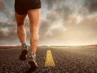 Teoria do treinamento desportivo