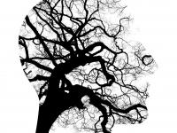 Área de atuação do psicopedagogo