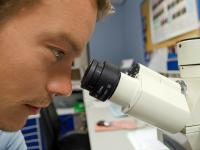 Práticas pedagógicas em biologia