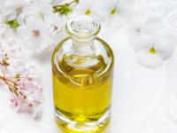Bases da farmacologia e cosmetologia