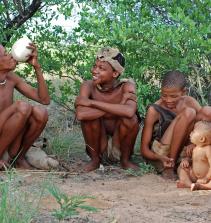 Arte indígena e afro brasileira