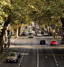 Meio ambiente e trânsito