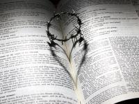 A sociedade brasileira e o ensino religioso