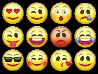 Bases neurofisiológicas das emoções