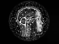 Técnicas de reabilitação neuropsicológica