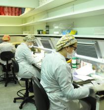 Macroscópica e conservação de peças anatômicas