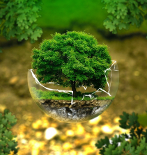 Remediação Ambiental