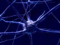 Doenças sistêmicas efeitos e prevenção