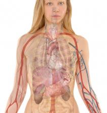 Emergência em nefrologia