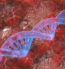 Fundamentos da Bioquímica