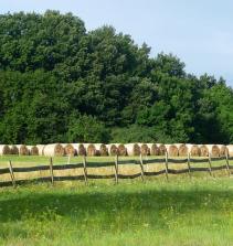Movimentos Sociais questão Agraria e Ambiental