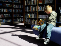 Atividades de Dinamização dos Serviços em Bibliotecas Escolares