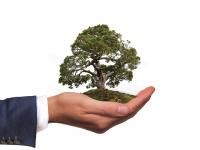Constitucionalismo Ambiental