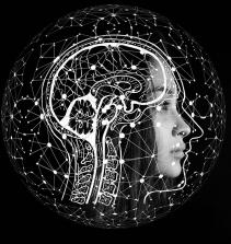 Saúde Mental, Conceitos Fundamentais