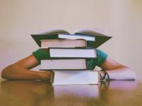 Educação: fonte de equidade social