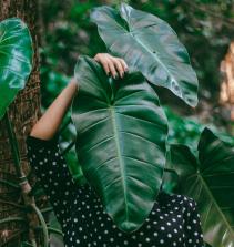 A busca por um mundo sustentável