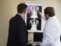 Anatomia e fisiologia do corpo humano II