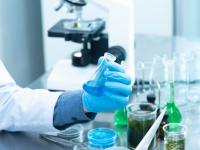 Toxicologia e substâncias químicas