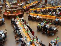 Biblioteconomia -  organizando o acervo