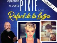 Corte Pixie 1 (Corte curto)