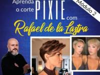 Corte Pixie 2 (Corte curto)