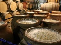 Curso de Cervejas Artesanais: Malte e Lúpulo