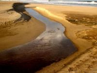 Curso de Gestão Ambiental e Recursos Hídricos