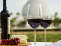 Curso de Harmonização e Degustação de Vinhos Tintos
