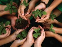 Curso de Licenciamento Ambiental na Prática