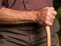 Atenção Integral a Saúde do Adulto e do Idoso