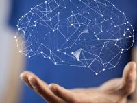 Introdução a Neurociência e Neuro Educação