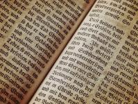 Literatura, Leitura e Linguagem