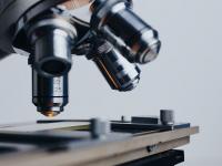 Microbiologia e parasitologia