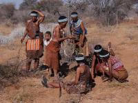 Patologias e Doenças dos Povos Indígenas