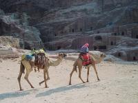 Radiestesia o uso do pêndulo egipicio